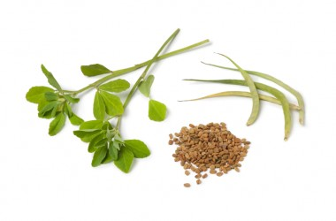 Fenugreek leaves pods and seeds builds muscles and more