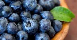 Close up of blueberries in a bowl