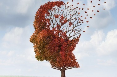 Illustration of memory loss through Alzheimer's or dementia a tree losing its leaves