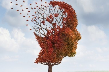 Illustration of head shaped tree losing its leaves to illustrate memory loss, dementia or Alzheimer's disease