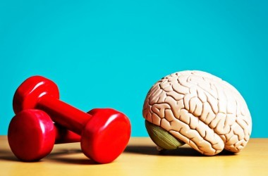 Brain next to a set of hand weights to illustrate reducing brain age