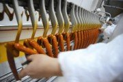 Man in processed meat factory makes sausage
