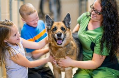 happy dog gets adopted by family