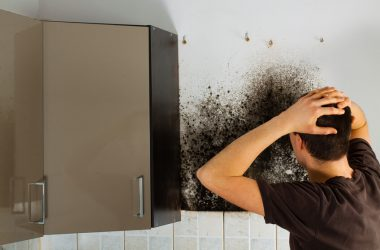 Man finds mold in his home