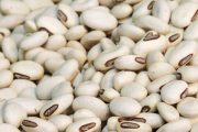 Close up of potassium rich navy beans which can help prevent stroke