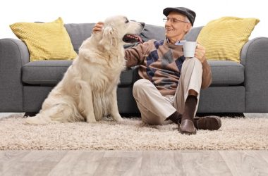 Older man petting his dog to illustrate natural pain relievers