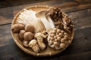 Various edible mushrooms which may help you fight infection