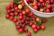 Tart cherry extract is made from cherries like these in bowl on brown burlap