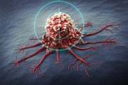 Close up illustration of a targeted cancer cell